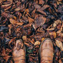 CabinCareWNC.com | Feet in Leaves